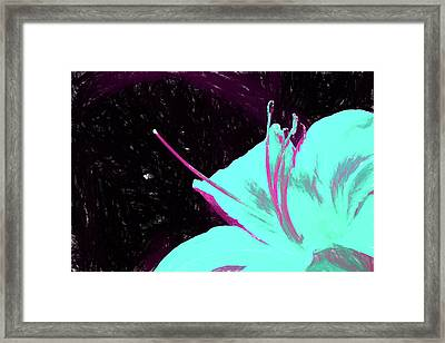 Day Lily Dual Tone  Framed Print