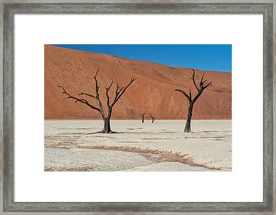 Framed Print featuring the photograph Deadvlei Namibia  by Rand