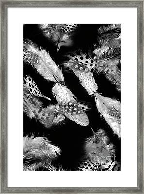 Decorated In Black And White Framed Print