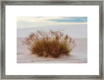 Framed Print featuring the photograph Desert Dwelling by Rick Furmanek