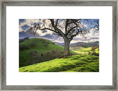 Diablo Winter Hills Framed Print by Vincent James