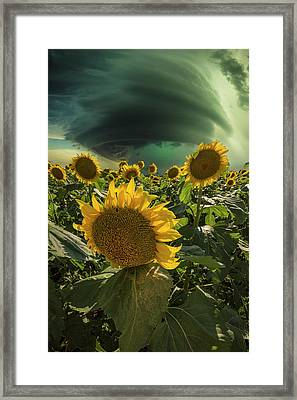 Framed Print featuring the photograph Disarray  by Aaron J Groen