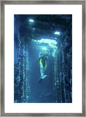 Diver In The  Framed Print