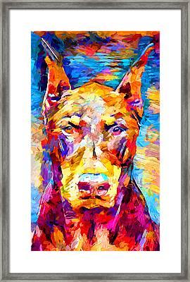 Doberman 3 Framed Print