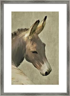 Donkey Framed Print