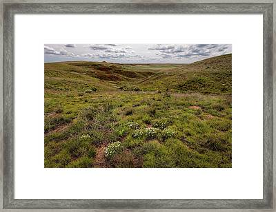 Framed Print featuring the photograph Dots Of White by Scott Bean