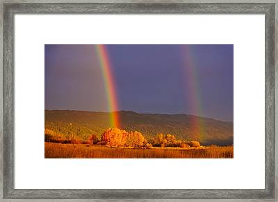 Double Gold Framed Print