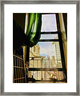 Framed Print featuring the photograph Doves In My Window by Joan Reese
