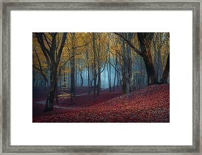 Visser Framed Art Prints Fine Art America