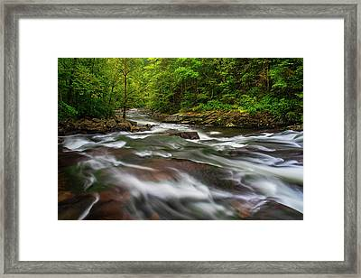 Framed Print featuring the photograph Down The Tellico River by Andy Crawford