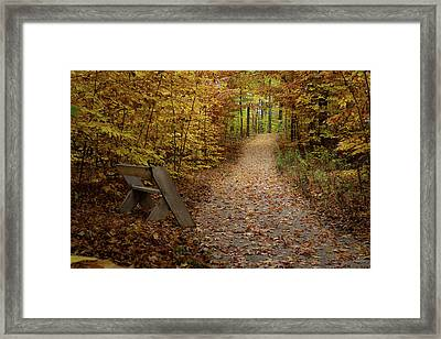 Down The Trail Framed Print