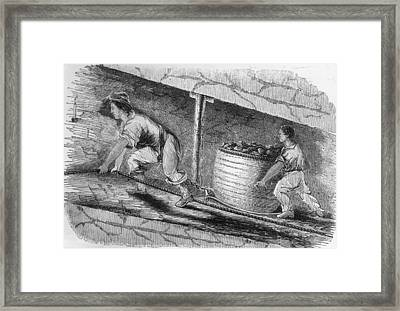 Dragging Coal Framed Print by Hulton Archive