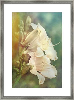 Framed Print featuring the photograph Dreamy Lilies by Leda Robertson