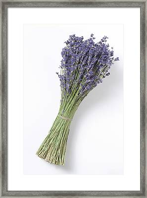 Dried Lavender Bunch, Elevated View Framed Print by Westend61