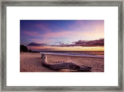 Driftwood At Sunset Framed Print
