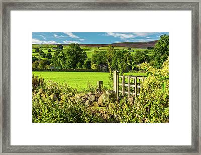 Drystone Wall, Reeth, Yorkshire Dales Framed Print by David Ross