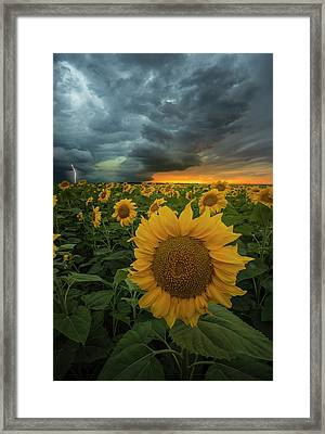 Framed Print featuring the photograph Eccentric  by Aaron J Groen