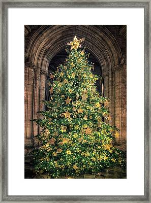 Ely Cathedral Christmas Tree 2018 Framed Print