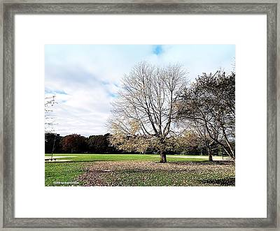 End Of Fall Framed Print by Maxim Tzinman