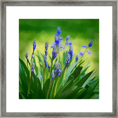 Essense Of Spring Framed Print