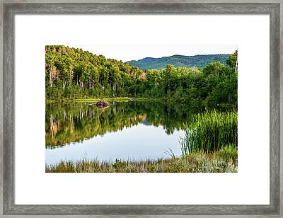 Framed Print featuring the photograph Evening At Ivie Pond by TL Mair