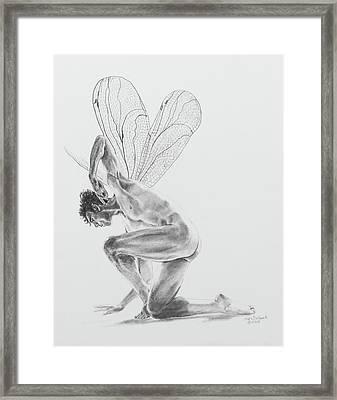 Fairy Dancer Framed Print