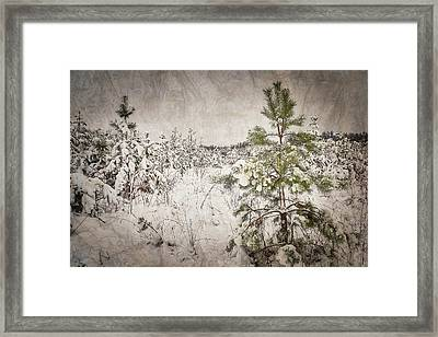 Fairytale Of Winter Forest. Shchymel, 2018. Framed Print