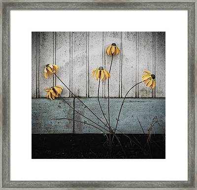 Fake Wilted Flowers Framed Print
