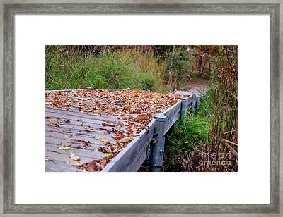 Fall Boardwalk Framed Print