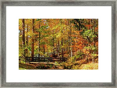 Fall Hike At Mirror Lake Framed Print