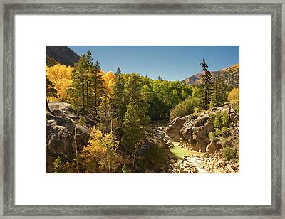 Fall On Independence Pass Framed Print