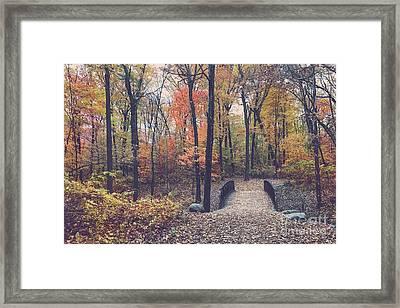 Fall Splendor Framed Print