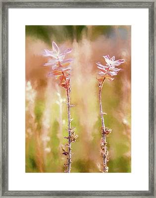 Framed Print featuring the photograph Fall Is Here by Rob Huntley