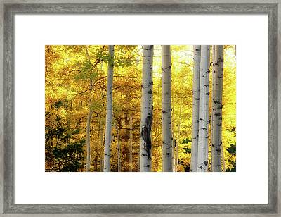 Fall's Visitation Framed Print