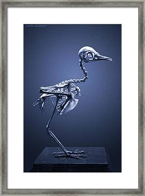 Featherless In Blue Framed Print