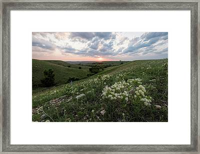Framed Print featuring the photograph Finally, Spring by Scott Bean
