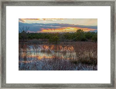 Framed Print featuring the photograph Fire In The Sky Over The Pines by Kristia Adams