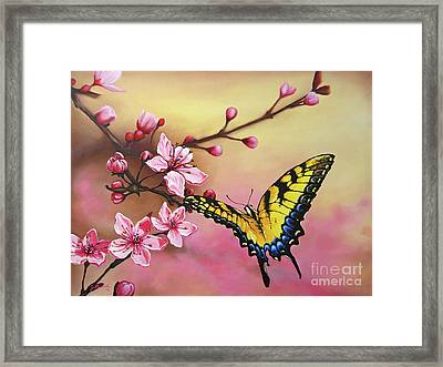 First Blossom Of The Morning Framed Print