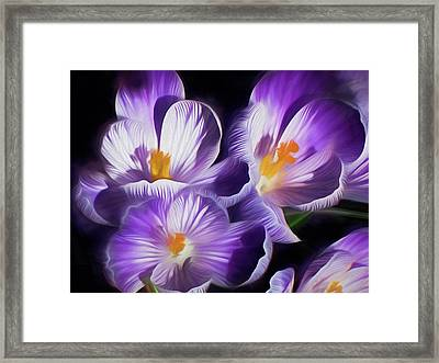 Framed Print featuring the mixed media First Crocuses On The Sunny Side Of The Street by Lynda Lehmann