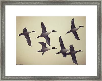 Framed Print featuring the painting Flight by Peter Mathios