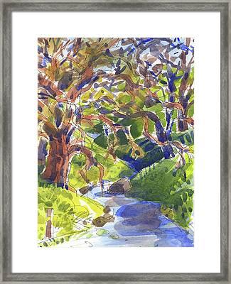 Flooded Trail Framed Print