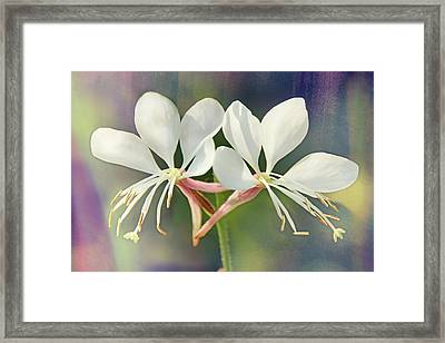 Framed Print featuring the photograph Floral Palette I by Leda Robertson