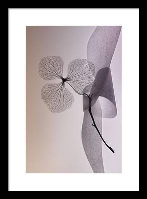 Poetic Framed Prints