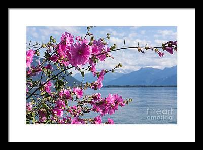 Lake Geneva Framed Prints