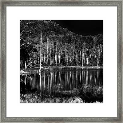 Framed Print featuring the photograph Fly Pond Reflection by David Patterson
