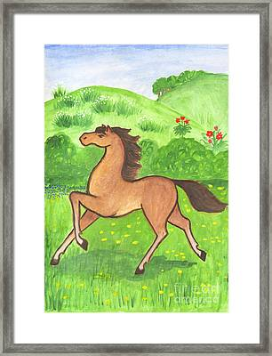Foal In The Meadow Framed Print