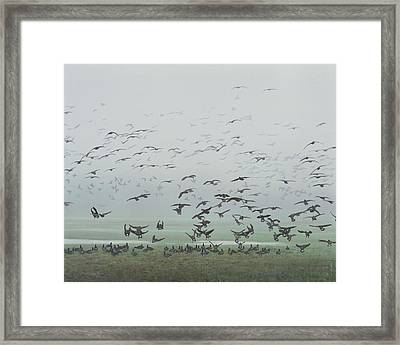Framed Print featuring the painting Foggy Arrival by Peter Mathios