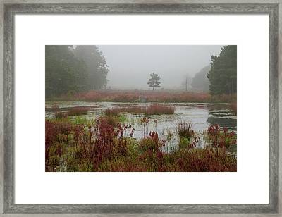 Framed Print featuring the photograph Foggy Morning At Cloverdale Farm by Kristia Adams