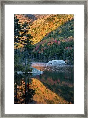 Foliage Burst At Kinsman Notch Framed Print