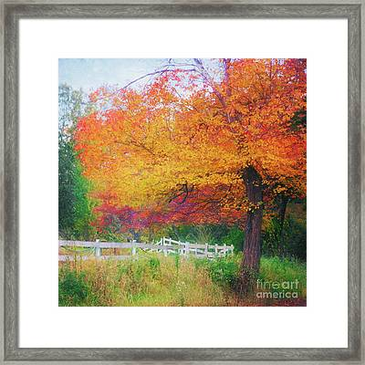 Foliage By The Farm Framed Print
